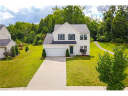 Photo of 1240 Creekledge Ct, Streetsboro, OH 44241 (MLS # 3926285)