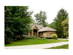 Photo of 248 Twin Creeks Dr, Chagrin Falls, OH 44023 (MLS # 3928249)