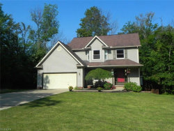 Photo of 7640 Kellogg Rd, Concord, OH 44077 (MLS # 3928711)