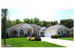 Photo of 2211 Meadow Sweet Ln, Streetsboro, OH 44241 (MLS # 3928960)