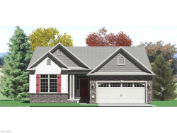 Photo of 3406 Florence's Way, Unit SL 7, Perry, OH 44081 (MLS # 3929583)