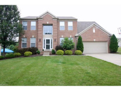 Photo of 2406 Harvester Dr, Stow, OH 44224 (MLS # 3931368)