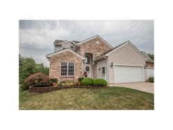 Photo of 153 Stonecreek Dr, Mayfield Heights, OH 44143 (MLS # 3931670)