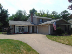 Photo of 8394 Markwood Dr, Mentor, OH 44060 (MLS # 3934680)