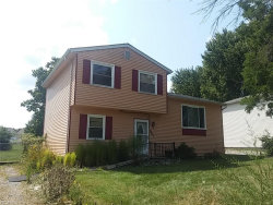 Photo of 9017 Store Dr, Windham, OH 44288 (MLS # 3936318)