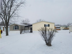 Photo of 10039 State Route 700, Unit 22, Mantua, OH 44255 (MLS # 3942784)