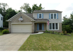 Photo of 2132 Demi Dr, Twinsburg, OH 44087 (MLS # 3943594)