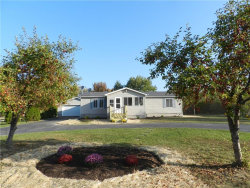 Photo of 6037 State Route 303, Mantua, OH 44255 (MLS # 3943880)