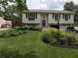 Photo of 1047 Kevin Dr, Kent, OH 44240 (MLS # 3945172)