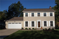 Photo of 9251 Wyant Dr, Mentor, OH 44060 (MLS # 3947369)