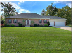 Photo of 7244 Rosedale Dr, Mentor, OH 44060 (MLS # 3948137)