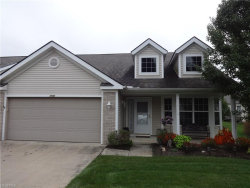 Photo of 2560 Edgebrook Crossing, Twinsburg, OH 44087 (MLS # 3948395)