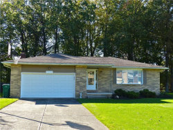 Photo of 7410 Ford Dr, Mentor, OH 44060 (MLS # 3949631)
