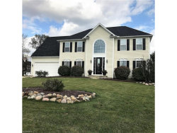 Photo of 2835 Sweet Flag Way, Stow, OH 44224 (MLS # 3950541)