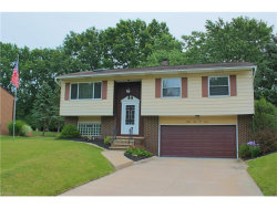Photo of 9407 Lawnfield Dr, Twinsburg, OH 44087 (MLS # 3960195)