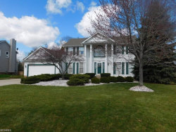 Photo of 10467 Belmeadow Dr, Twinsburg, OH 44087 (MLS # 3961909)