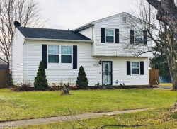 Photo of 9900 Bright Dr, Windham, OH 44288 (MLS # 3961970)