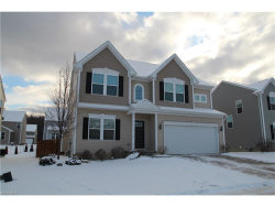 Photo of 3144 Liberty Ledges Dr, Twinsburg, OH 44087 (MLS # 3963501)