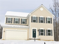 Photo of 3575 Jude Cir, Twinsburg, OH 44087 (MLS # 3963675)