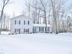Photo of 209 Parkview Dr, Aurora, OH 44202 (MLS # 3963974)