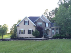 Photo of 4185 Industry Rd, Rootstown, OH 44272 (MLS # 3964885)