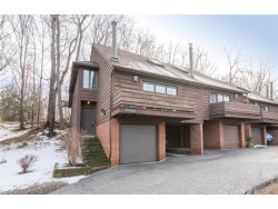 Photo of 215 Solon Rd, Unit 215A, Chagrin Falls, OH 44022 (MLS # 3965459)