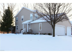 Photo of 1658 Maple View Ct, Streetsboro, OH 44241 (MLS # 3965765)