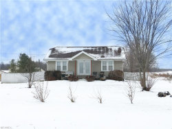 Photo of 4655 State Route 14, Ravenna, OH 44266 (MLS # 3965769)