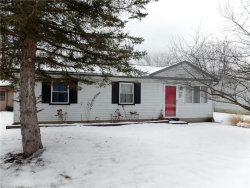 Photo of 9888 Green Dr, Windham, OH 44288 (MLS # 3966089)