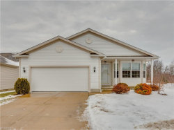 Photo of 5295 Deer Trace Dr, Kent, OH 44240 (MLS # 3966210)