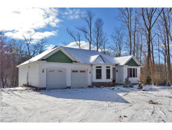 Photo of 8060 Norton Rd, Garrettsville, OH 44231 (MLS # 3966744)