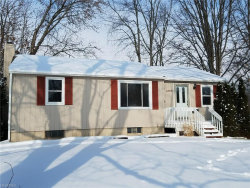 Photo of 1265 Meadow Dr, Kent, OH 44240 (MLS # 3966878)