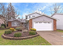 Photo of 5960 Cantwell Dr, Mayfield Heights, OH 44124 (MLS # 3967198)