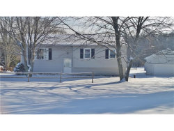 Photo of 11208 Center Rd, Garrettsville, OH 44231 (MLS # 3968546)