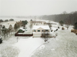 Photo of 11215 Bloom Rd, Garrettsville, OH 44231 (MLS # 3974046)