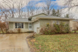 Photo of 8986 White Oak Dr, Twinsburg, OH 44087 (MLS # 3974635)