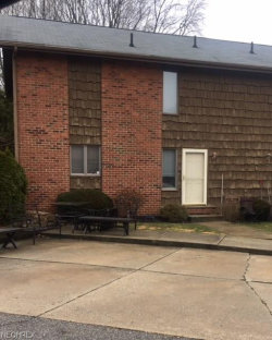 Photo of 10571 White St, Unit 4, Garrettsville, OH 44231 (MLS # 3975380)