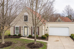 Photo of 9560 Olde Pond Ln, Twinsburg, OH 44087 (MLS # 3975821)