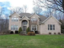 Photo of 2985 Abrams Dr, Twinsburg, OH 44087 (MLS # 3975869)
