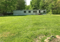 Photo of 9852 Knowlton Rd, Garrettsville, OH 44231 (MLS # 3975919)
