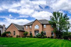 Photo of 1060 Fox Den Trl, Canfield, OH 44406 (MLS # 3976741)