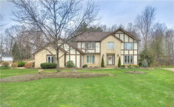 Photo of 10040 Weathersfield Dr, Concord, OH 44060 (MLS # 3976871)