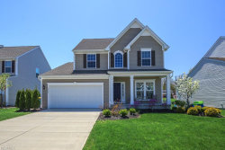 Photo of 10154 Colton Ave, Concord, OH 44077 (MLS # 3977935)