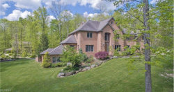 Photo of 12805 Greystone Dr, Hiram, OH 44234 (MLS # 3978008)