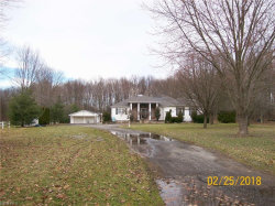 Photo of 6150 Villa Marie Rd, Lowellville, OH 44436 (MLS # 3978082)