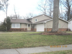 Photo of 7304 Hayes Blvd, Mentor, OH 44060 (MLS # 3979119)