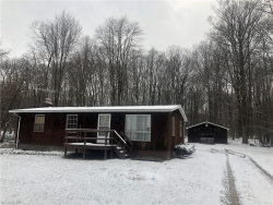 Photo of 11491 State Route 44, Mantua, OH 44255 (MLS # 3979331)