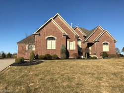 Photo of 6764 Kyle Ridge Pointe, Canfield, OH 44406 (MLS # 3979339)