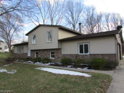 Photo of 2424 Norton Rd, Stow, OH 44224 (MLS # 3979506)