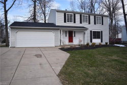 Photo of 6674 Ivana Ct, Mentor, OH 44060 (MLS # 3979681)